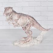T Rex Skelaton
